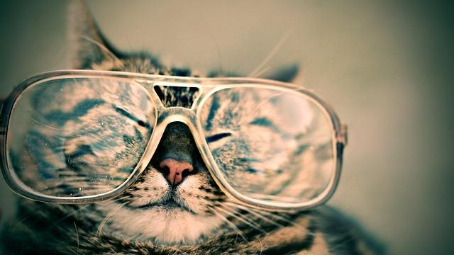 Как и чем чистить очки, избавиться от царапин
