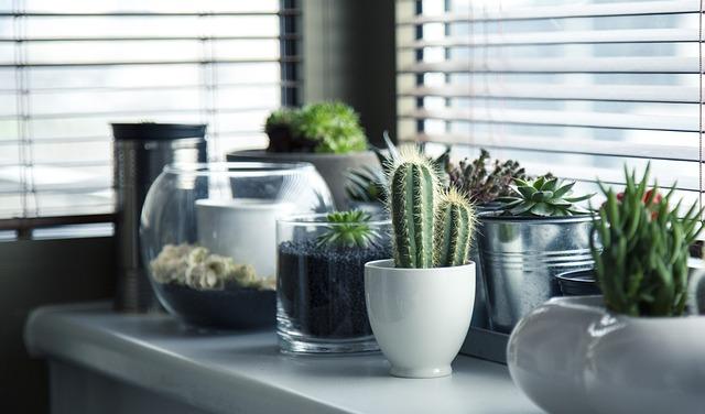 7 способов, чем отмыть скотч от стекла