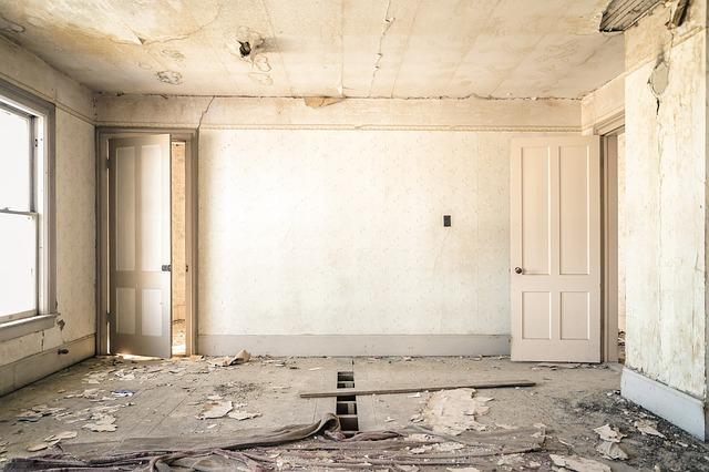 Плесень на стене в квартире: что делать, как избавиться от грибка на стенах