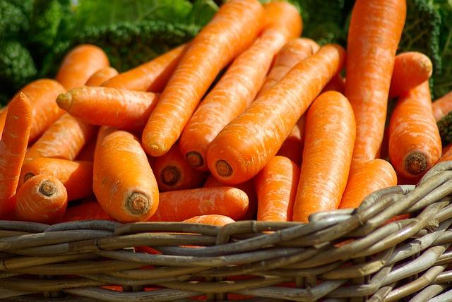 Морковная муха: как с ней бороться, как избавиться от морковной мухи на грядках