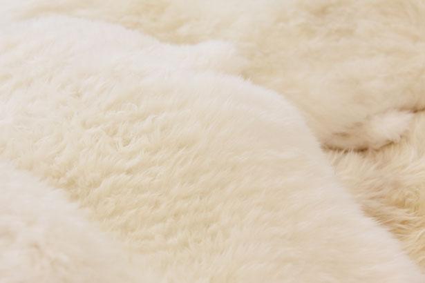 Чистка овчины в домашних условиях: тулуп, чехлы, шкура, белая овчина